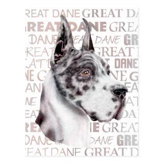 Great Dane Show Colors Harlequin Postcard