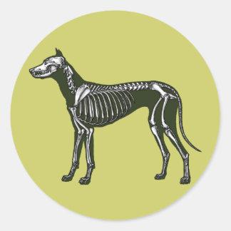 Great Dane skeleton Classic Round Sticker