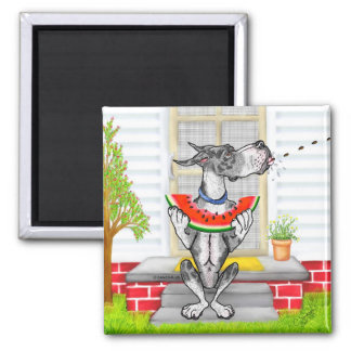 Great Dane SPIT MerleB 2 Inch Square Magnet