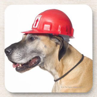 Great Dane wearing a red construction helmet Beverage Coaster