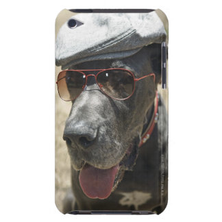 Great Dane wearing hat and sunglasses Case-Mate iPod Touch Case
