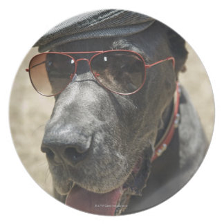 Great Dane wearing hat and sunglasses Plate