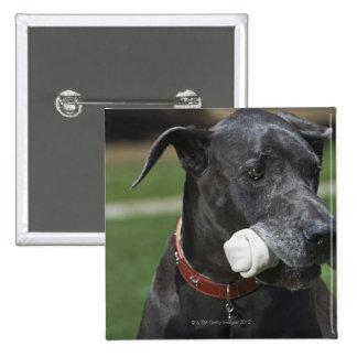 Great Dane with bone Pinback Button