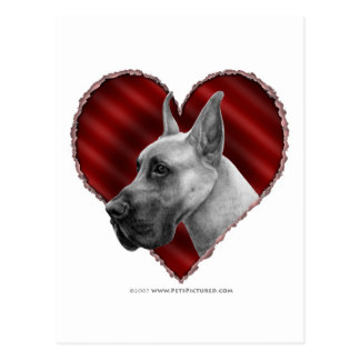 Great Dane with Heart Postcard