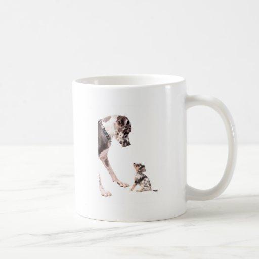 Great dane y chihuahua tazas de café