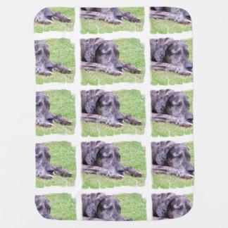 Great Dane Swaddle Blankets