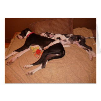 Great Danes Lovey & Gunner 'Sweet Dreams' Card