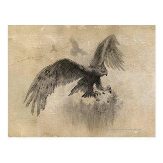 Great Eagles Sketch Postcard