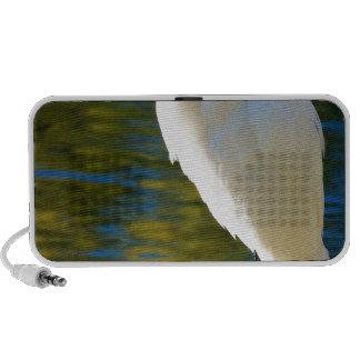 Great Egret 2 Travelling Speaker