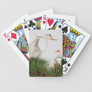 Great Egret (Ardea Alba) Breeding Activity Bicycle Playing Cards