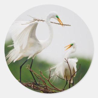 Great Egret (Ardea Alba) Breeding Activity Classic Round Sticker