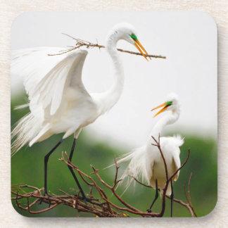 Great Egret (Ardea Alba) Breeding Activity Coasters