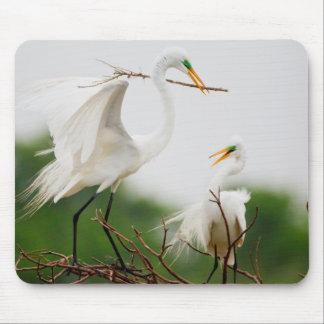 Great Egret (Ardea Alba) Breeding Activity Mouse Pad