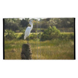 Great Egret at Viera Wetlands Caseable Case iPad Cases