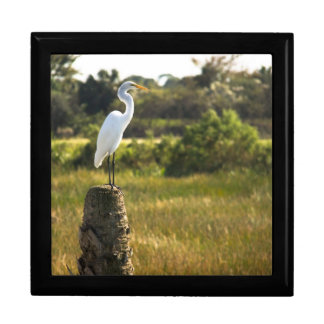 Great Egret at Viera Wetlands giftbox Keepsake Boxes