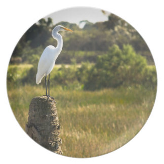 Great Egret at Viera Wetlands Plate