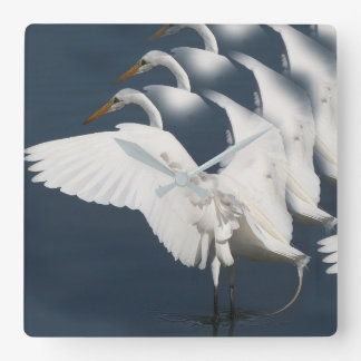 Great Egret Bird Wildlife Animal Photography Square Wall Clock