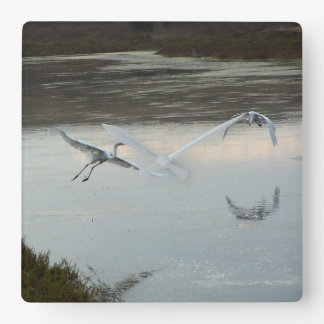 Great Egret Birds Wildlife Animal Photography Square Wall Clock