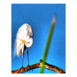 Great Egret HDR Photograph Personalized Letterhead
