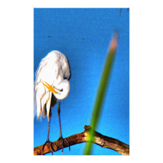Great Egret HDR Photograph Stationery