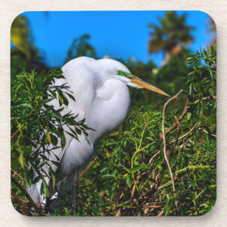 Great Egret in a Tree Coaster