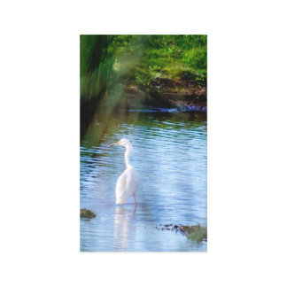 Great egret in wetlands gallery wrapped canvas
