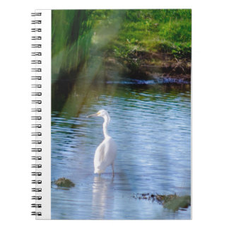 Great egret in wetlands notebook