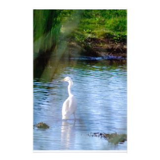 Great egret in wetlands stationery