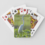 Great Egret, Iquitos, Maynas, Peru Playing Cards