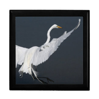Great Egret Landing Gift Box