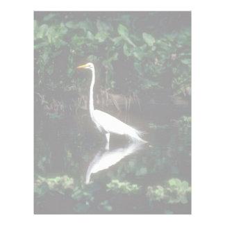 Great Egret Letterhead