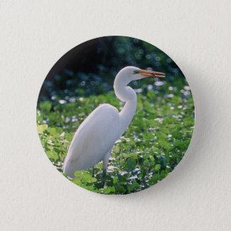 Great Egret Pinback Button