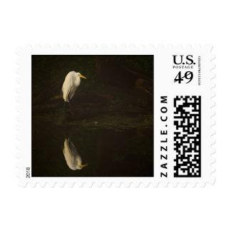 Great Egret Postage Stamp