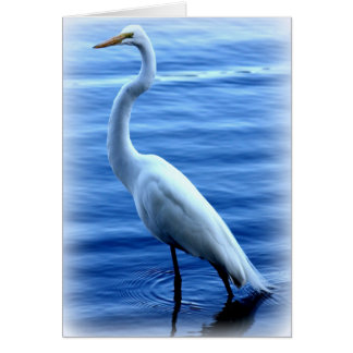 Great Egret Standing Tall Card