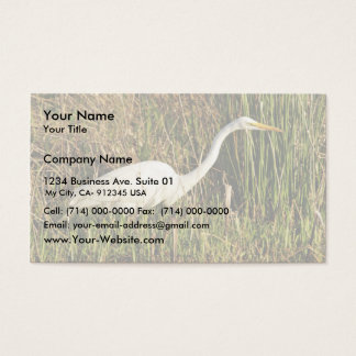 Great egret wading business card