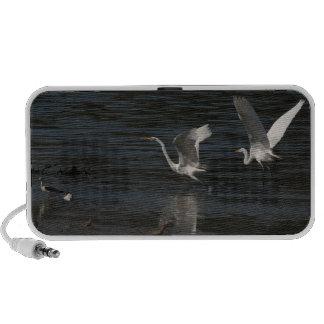 Great Egrets Courtship Doodle Speaker