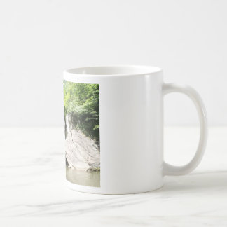 Great Falls of the Dan Coffee Mug