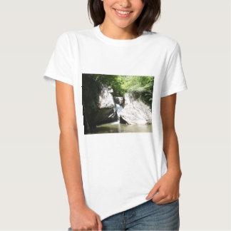 Great Falls of the Dan Shirt