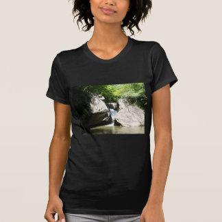 Great Falls of the Dan T-shirt
