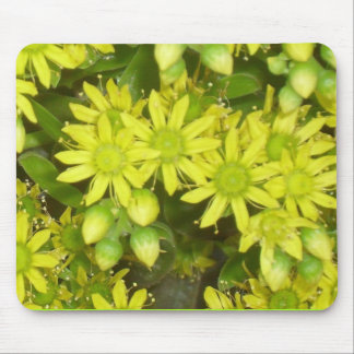 great flower_ mouse pad