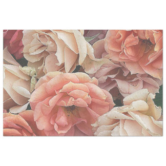 "great garden roses, soft peach 20"" x 30"" tissue paper"