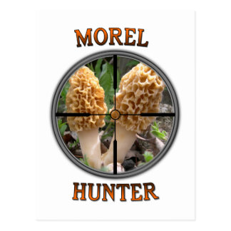 Great Gear For Morel Mushroom Hunters Postcard