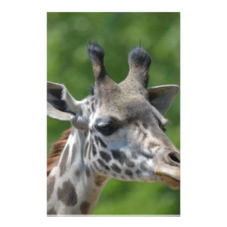 Great Giraffe Stationery