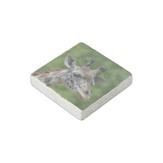 Great Giraffe Stone Magnet