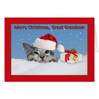 Great Grandson's Kitten Christmas Card