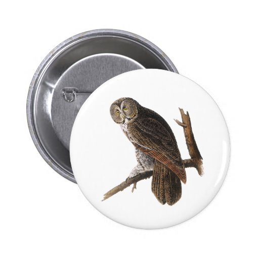 Great Gray Owl 2 Inch Round Button