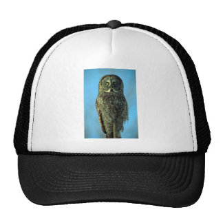 Great gray owl, Bruce Penninsula Mesh Hat