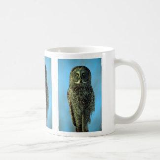 Great gray owl, Bruce Penninsula Coffee Mug