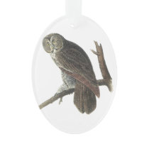 Great Gray Owl by Audubon Ornament