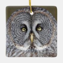 Great gray owl close-up, Canada Ceramic Ornament